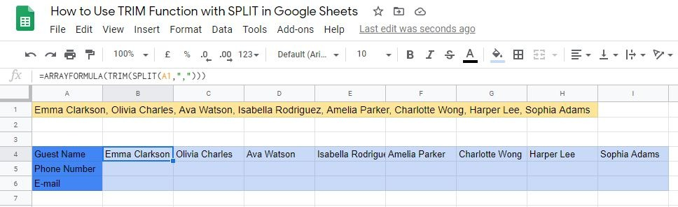 A Real Example of how to use TRIM Function with SPLIT in Google Sheets